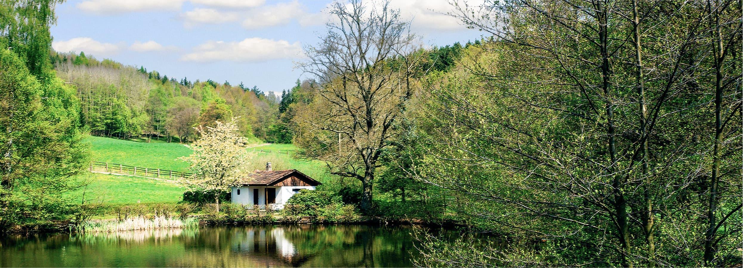 チューリンゲンの森